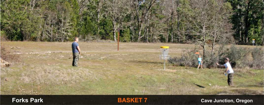 Forks-Park-disc-golf-Cave-Junction-basket-7