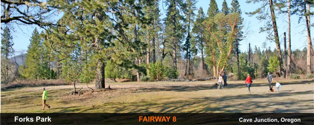 Forks-Park-disc-golf-Cave-Junction-fairway-8