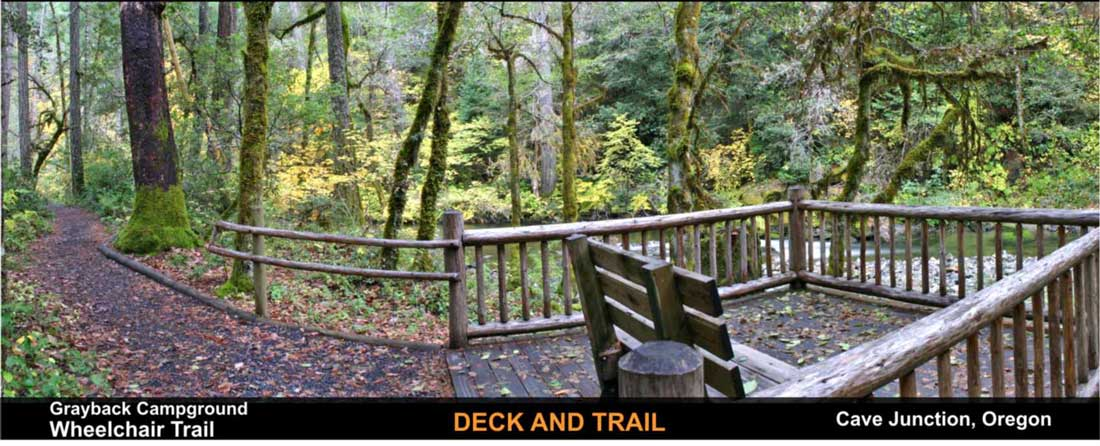 grayback-camp-wheelchair-trail-cave-junction-oregon-3