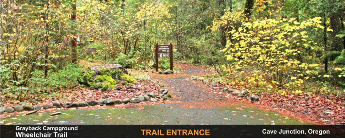 grayback-camp-wheelchair-trail-cave-junction-oregon-7