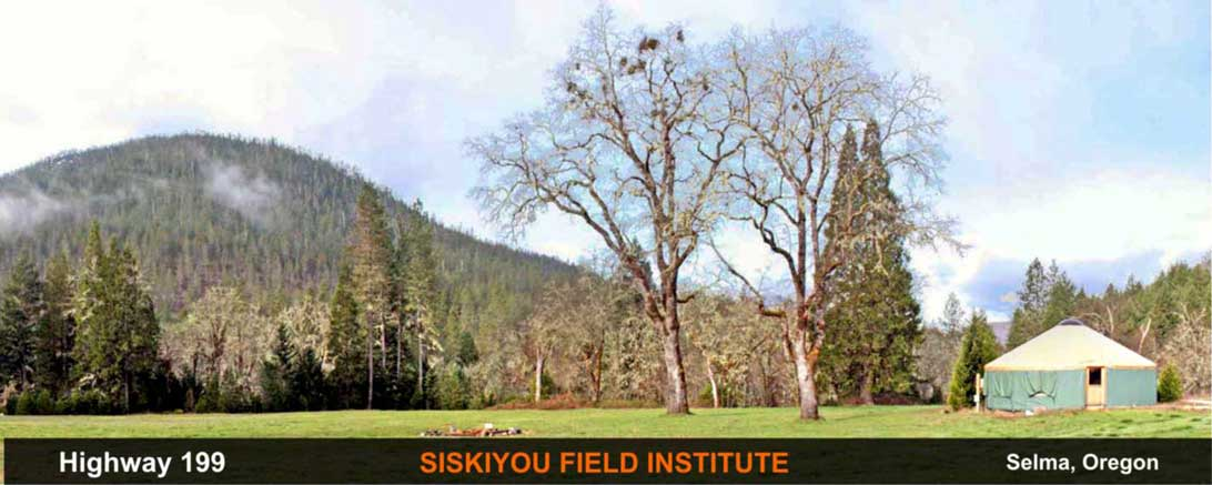 siskiyou-field-institute-selma-oregon-poi