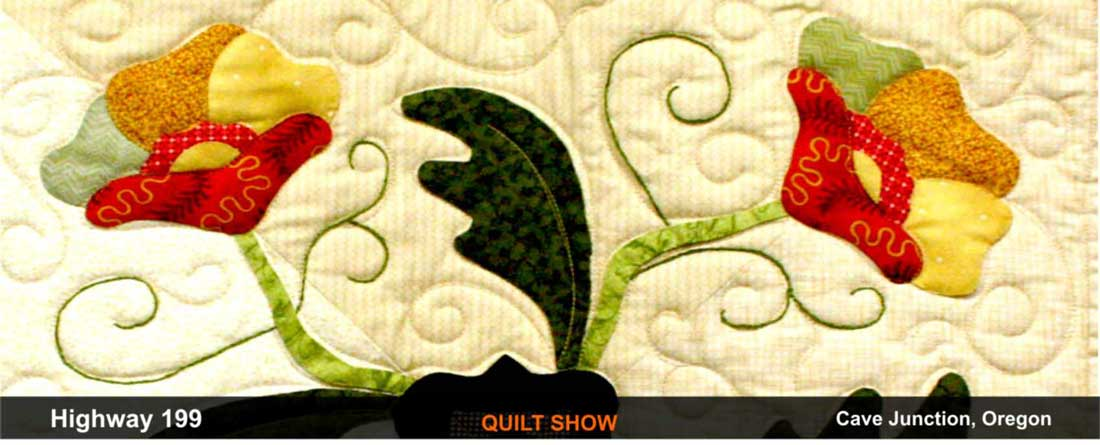 quilt-show-cave-junction-oregon-3