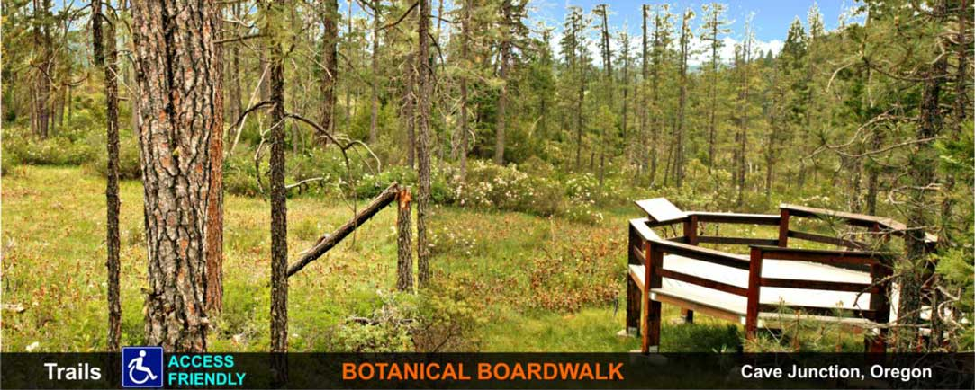 trail-botanical-boardwalk-cave-junction-oregon