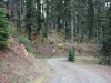 Road 017 climbing the southwest flank of Weston Peak