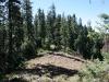 Open area on ridge top north of Poker Flat