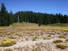 Poker Flat at north end of Siskiyou Wilderness