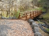 forks-state-park-trail-bridge