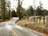 Moon Tree Run - Airport Drive passes ranch house