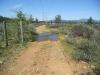 Moon Tree Run - water ditch crossing