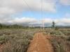 Moon Tree Run - powerline road looking north