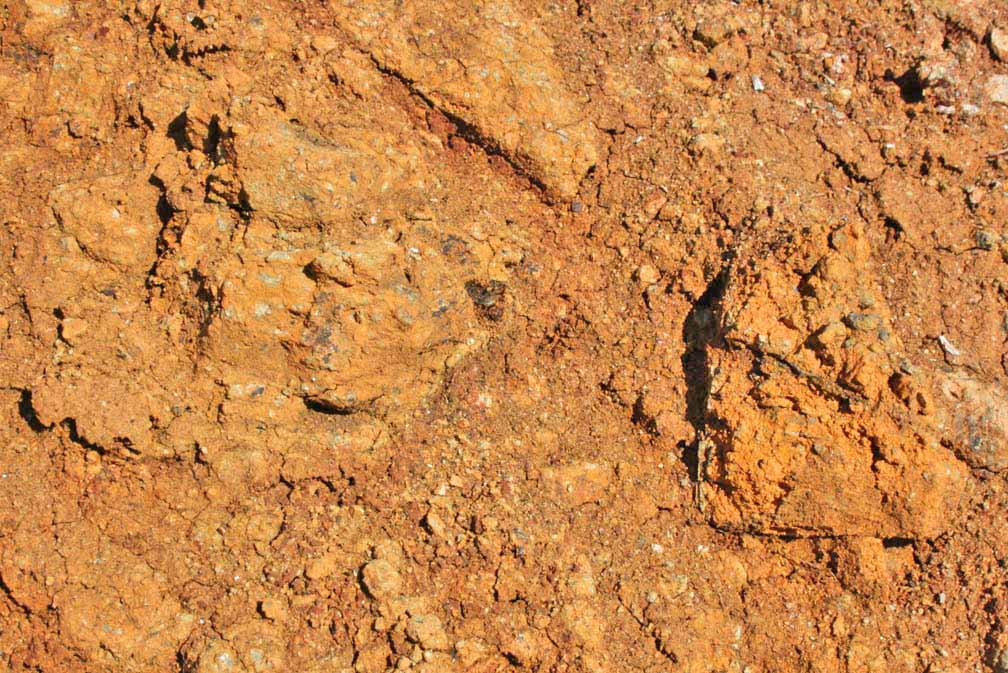 Nickel exploration highway 199 for Minerals found in soil