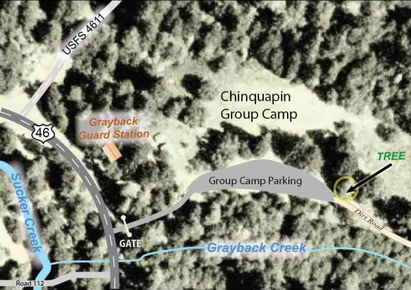 Map showing the location of the Camp Oregon Caves Heritage Tree, Cave Junction, Oregon