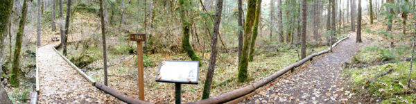 photo of waters creek trail showing the accessible trail surface and bridge. Cave Junction, Oregon