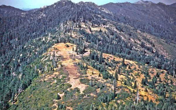 Photo of landing strip on a ridge near Fish Hook Peak, southwest Oregon