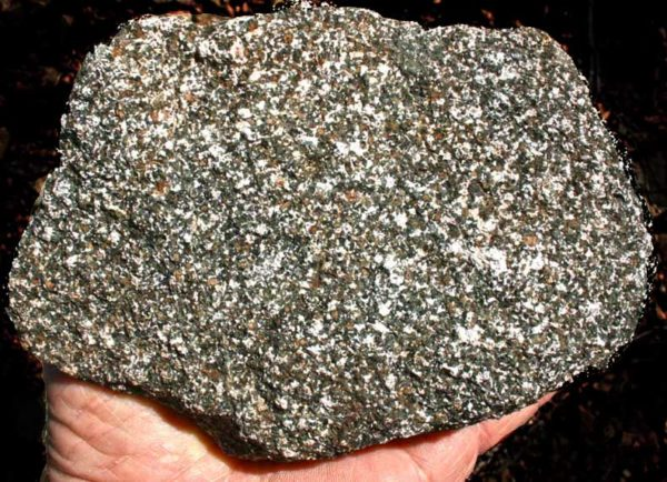 Photo of amphibolite found along the TJ Howell Botanical Drive, Cave Junction, Oregon