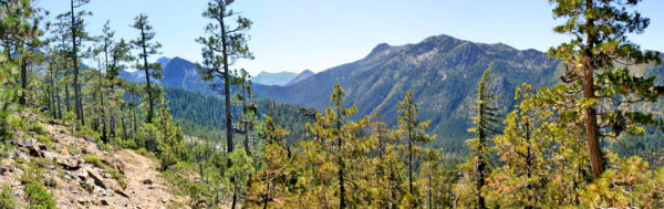 Photo of Black Butte Trail looking into the Siskiyou Wilderness, Cave Junction, Oregon