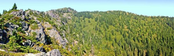 Photo showing the rocky ridge and forest seen along the trail to Rabbit Lake, Cave Junction, Oregon